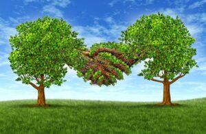 Ưu đãi đầu tư theo quy định mới có hiệu lực từ 01/07/2015 1
