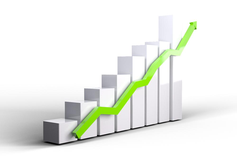 Tăng giảm vốn điều lệ trong công ty trách nhiệm hữu hạn hai thành viên trở lên 1