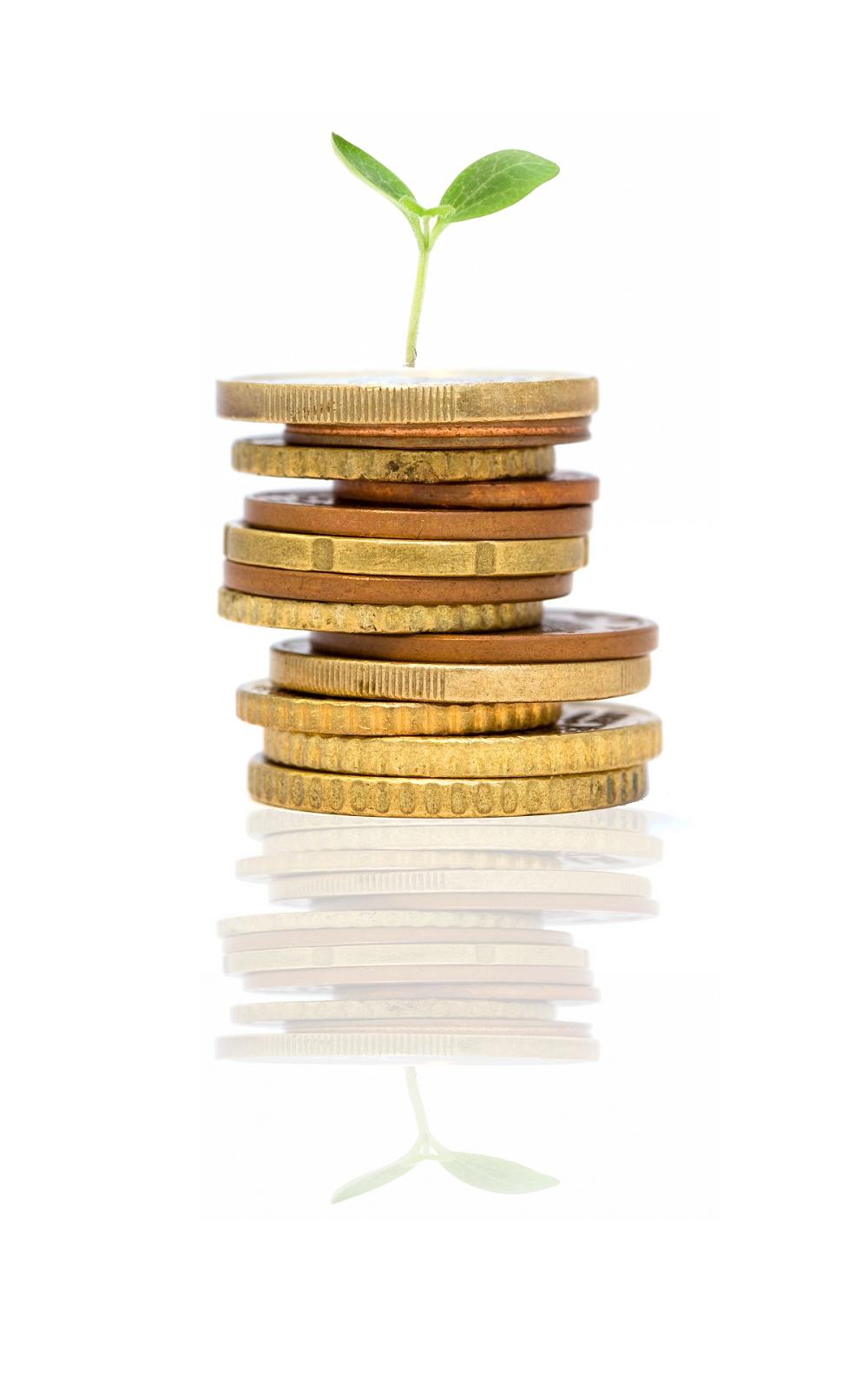 Nhà đầu tư nước ngoài chuyển vốn đầu tư gián tiếp vào Việt Nam 1