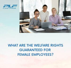 What Are The Welfare Rights Guaranteed For Female Employees?