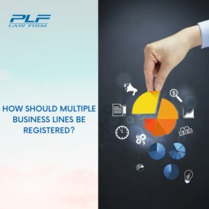Should Register Multiple Business Lines